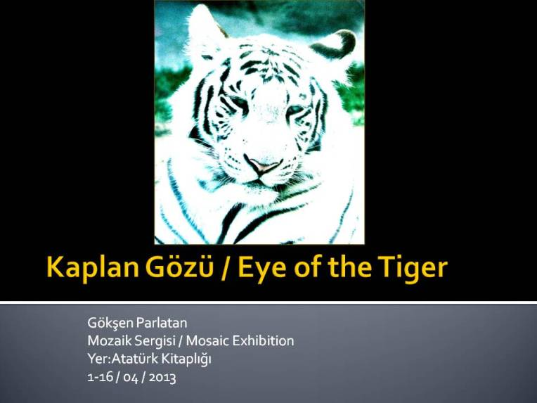 Eye Of The Tiger / Kaplan Gözü